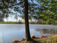 French property for sale in SARLANDE, Dordogne - €41,500 - photo 3