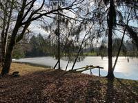 French property for sale in SARLANDE, Dordogne - €41,500 - photo 2