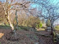 French property for sale in BEAUREGARD DE TERRASSON, Dordogne - €129,800 - photo 7