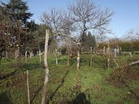 French property for sale in LISLE-JOURDAIN, Vienne - €82,500 - photo 10