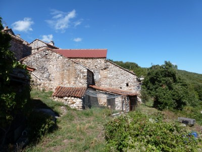 French property, houses and homes for sale in RIOLS Herault Languedoc_Roussillon