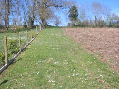 French property, houses and homes for sale in Confolens
