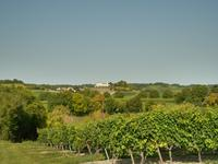 French property, houses and homes for sale inBOUTEVILLECharente Poitou_Charentes