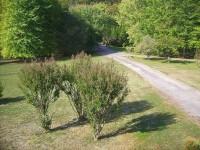 French property for sale in MONPLAISANT, Dordogne - €347,750 - photo 8