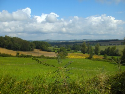 French property, houses and homes for sale in BRUGNAC Lot_et_Garonne Aquitaine