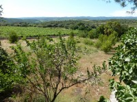 French property for sale in AIGUES VIVES, Herault - €61,000 - photo 2