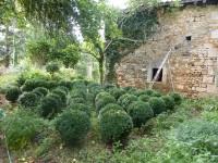 Maison à vendre à CHARRAS en Charente - photo 4