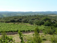 French property for sale in AIGUES VIVES, Herault - €20,000 - photo 10