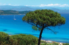 French property for sale in ST TROPEZ, Var - €345,000 - photo 6