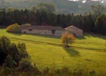 Chateau à vendre à PERIGUEUX en Dordogne - photo 9