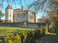 Chateau à vendre à CHADURIE en Charente - photo 9