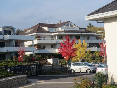 French property, houses and homes for sale in DIVONNE LES BAINS Ain Rhone Alps