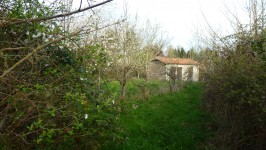 French property for sale in LES FORGES, Deux Sevres - €11,000 - photo 5