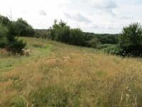 Super terrain à batir situé en sortie d'une belle ville avec château en Dordogne