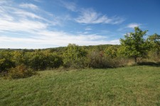 French property for sale in ITZAC, Tarn - €43,000 - photo 2