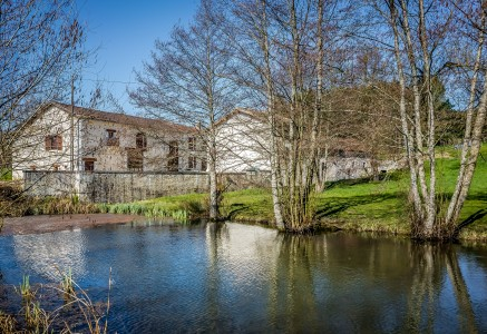 PRICE NOW 595,000 euros ! A fantastic conversion of an original French farmhouse and barn into 5 bedroom family home,