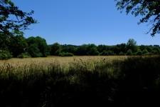 French property for sale in EYGURANDE ET GARDEDEUIL, Dordogne - €77,000 - photo 9