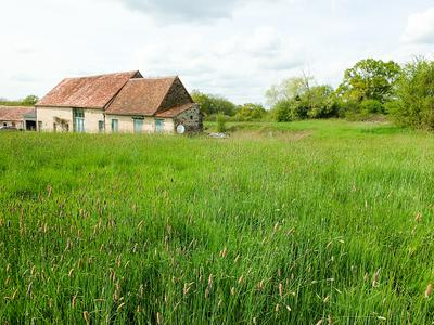 French property, houses and homes for sale in VIEURE Allier Auvergne