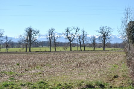 French property, houses and homes for sale in MONLEON MAGNOAC Hautes_Pyrenees Midi_Pyrenees