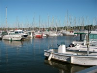 French property for sale in ARZAL, Morbihan photo 2