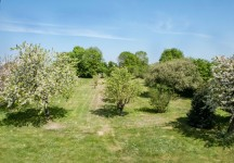 French property for sale in SION LES MINES, Loire Atlantique - €278,200 - photo 3
