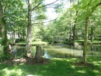 French property for sale in BERGERAC, Dordogne - €1,250,000 - photo 10