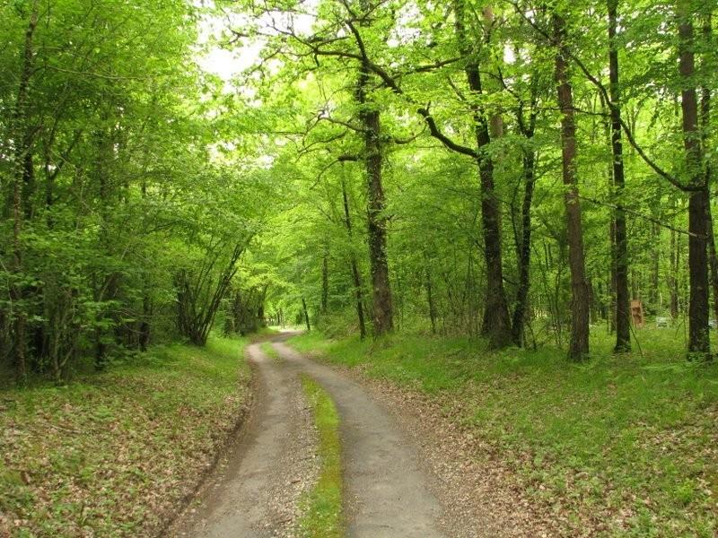 Terrain vendre en aquitaine dordogne les eyzies de for Prix des terrains non constructibles