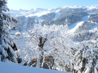 French property for sale in MERIBEL CENTRE, Savoie - €785,000 - photo 2