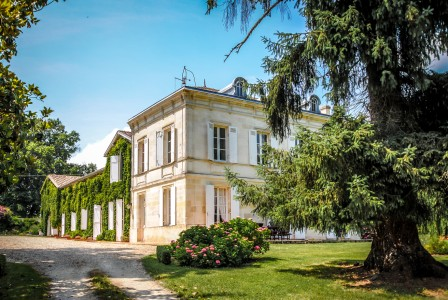 French property, houses and homes for sale in POMEROL - LIBOURNE Gironde Aquitaine