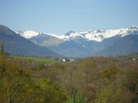 French property for sale in HAUT DE BOSDARROS, Pyrenees Atlantiques - €1,610,000 - photo 10
