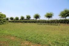 terrain à vendre à MAINZAC, Charente, Poitou_Charentes, avec Leggett Immobilier