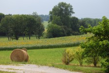 French property for sale in ST ROMAIN, Charente - €355,100 - photo 10