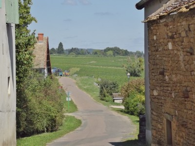 French property, houses and homes for sale in SAINT BOIL Saone_et_Loire Bourgogne