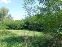 French property for sale in COUSSAC BONNEVAL, Haute Vienne - €22,000 - photo 10