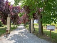 French property for sale in CARS, Gironde - €2,100,000 - photo 2