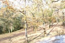French property for sale in SARLAT LA CANEDA, Dordogne - €386,000 - photo 5