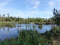 Près de Fontainebleau sur 8 hectares avec un lac, Belle propriété 1800 + dépendances. Beaux volumes et 14 Chambres