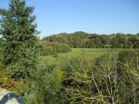 Terrain à vendre à CHATELAIS en Maine et Loire - photo 5
