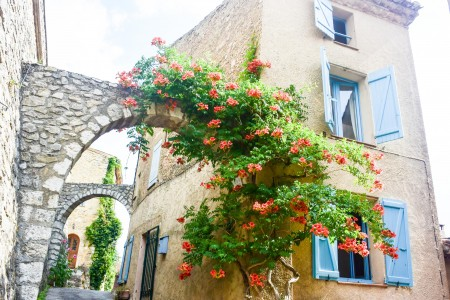 French property, houses and homes for sale in MOISSAC BELLEVUE Provence Cote d'Azur Provence_Cote_d_Azur