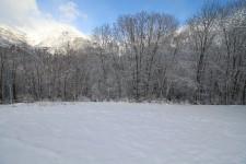 French ski chalets, properties in BONS, Les Deux Alpes 1350, Les Deux Alpes