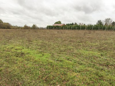 French property, houses and homes for sale in ORIVAL Charente Poitou_Charentes