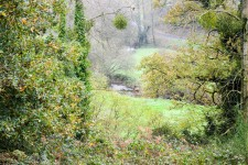 French property for sale in PLOUGUENAST, Cotes d Armor - €209,995 - photo 10