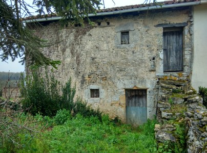 French property, houses and homes for sale in ST PIERRE D EXIDEUIL Vienne Poitou_Charentes