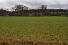 French property for sale in VIEUX MAREUIL, Dordogne - €32,000 - photo 2