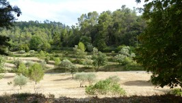 French property for sale in BARJOLS, Var photo 3