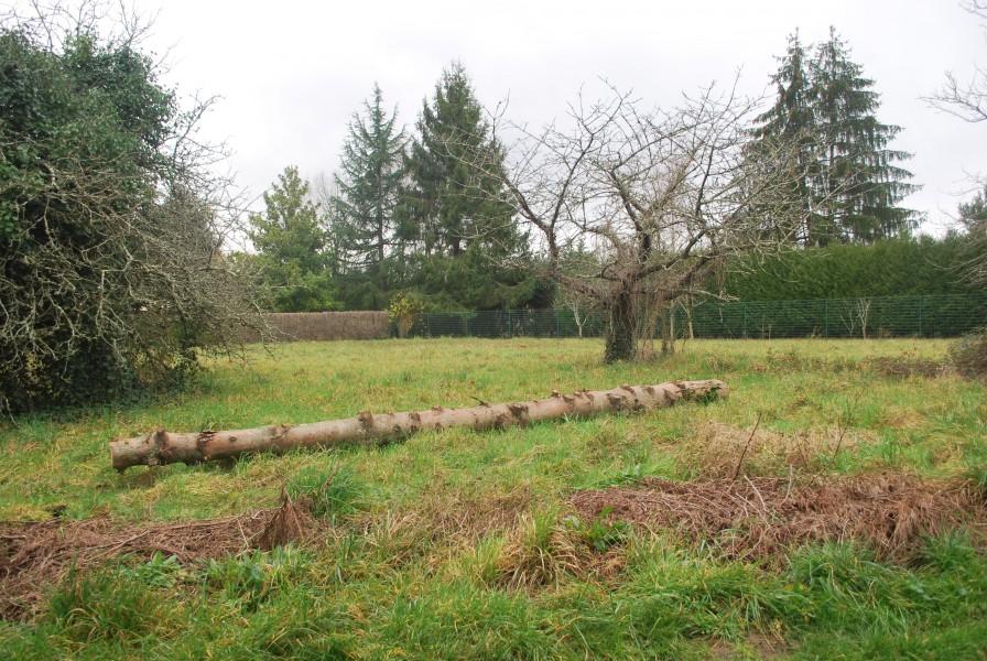 Terrain vendre en poitou charentes charente dignac for Acheter un terrain pour construire