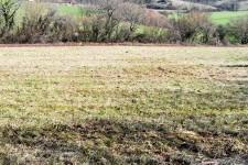 French property for sale in LA CHAPELLE FAUCHER, Dordogne - €22,000 - photo 6