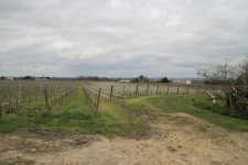 French property for sale in LIBOURNE, Gironde photo 1
