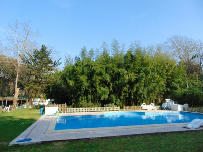French property, houses and homes for sale in OLONNE SUR MER Vendee Pays_de_la_Loire