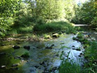 French property for sale in SAVIGNAC LEDRIER, Dordogne - €249,310 - photo 9